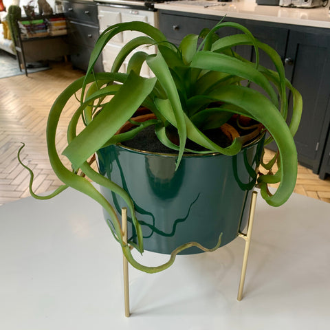 Gold Lined Planter in Blue or Green (Large) - mylesfromhome.co.uk
