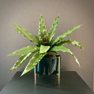 Gold Lined Planter in Blue or Green (Small) - mylesfromhome.co.uk