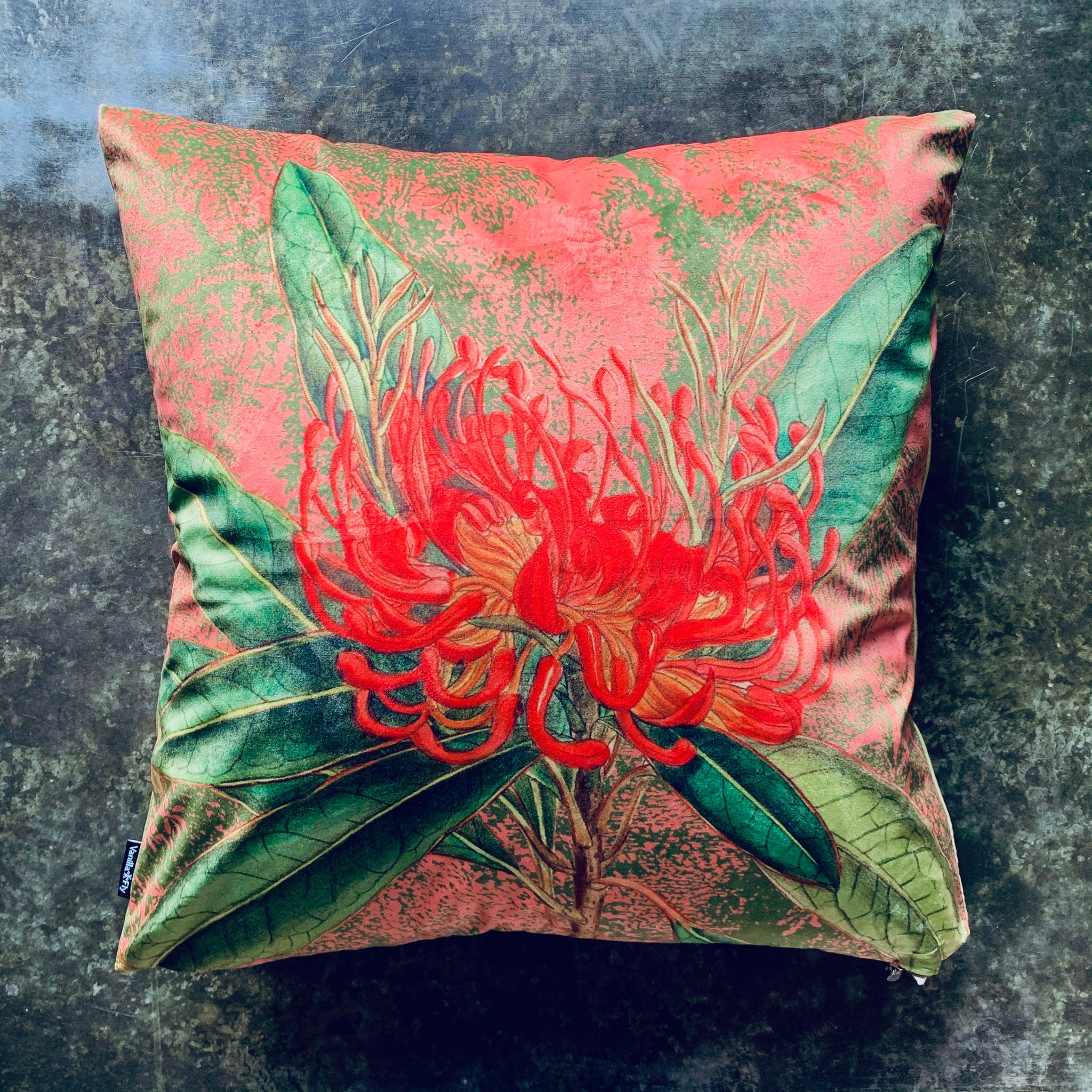 Coral Nutans Velvet Cushion - mylesfromhome.co.uk