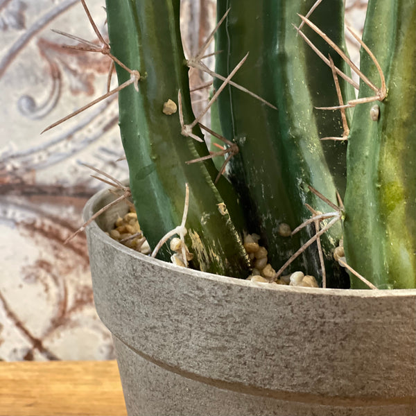 Potted Faux Desert Cactus (Large) - mylesfromhome.co.uk