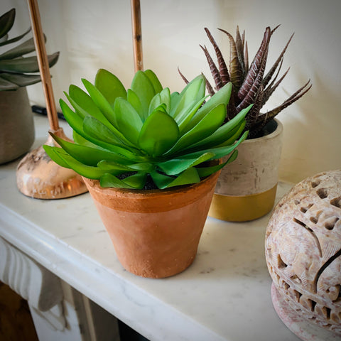 Faux Succulent in Terracotta Pot - mylesfromhome.co.uk