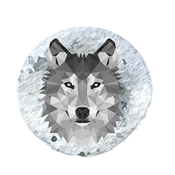 Lone Wolf Boutique