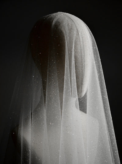 CAPELLA | Sparkling Wedding Veil with Blusher - Noon on the Moon