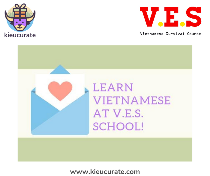V.E.S Voucher - Vietnamese School for Expats