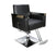 BarberPub Classic Hydraulic Barber Chair Salon Spa Styling Equipment 3021