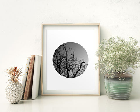 Wall Art Dusk Digital Print Trees Poster Art Dusk Wall Art Print Trees Photography Art Trees Photography Print Dusk Wall Decor Dusk Nature - Digital Download