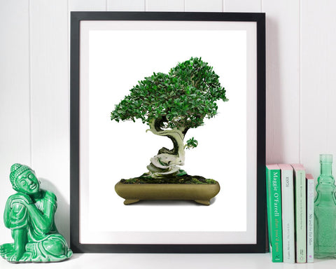 Wall Art Bonsai Digital Print Bonsai Poster Art Bonsai Wall Art Print Bonsai Home Art Bonsai Home Print Bonsai Wall Decor Bonsai - Digital Download