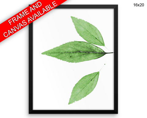 Leaf Print, Beautiful Wall Art with Frame and Canvas options available Nature Decor