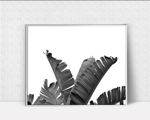 Wall Art Banana Leaf Digital Print Banana Leaf Poster Art Banana Leaf Wall Art Print Banana Leaf Fruit Art Banana Leaf Fruit Print Banana - Digital Download