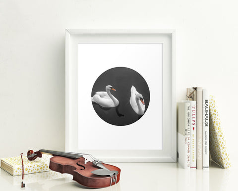 Wall Art Swan Digital Print Swan Poster Art Swan Wall Art Print Swan Living Room Art Swan Living Room Print Swan Wall Decor Swan Fine Art - Digital Download