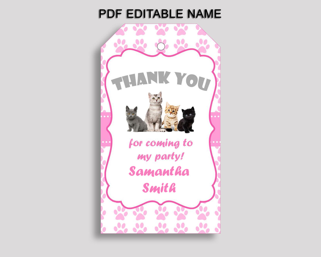 Cat Gift Favor Tags Pink White Birthday Favor Tags Cat Gift Tags Cat Party Gift Tags Girl INHA8