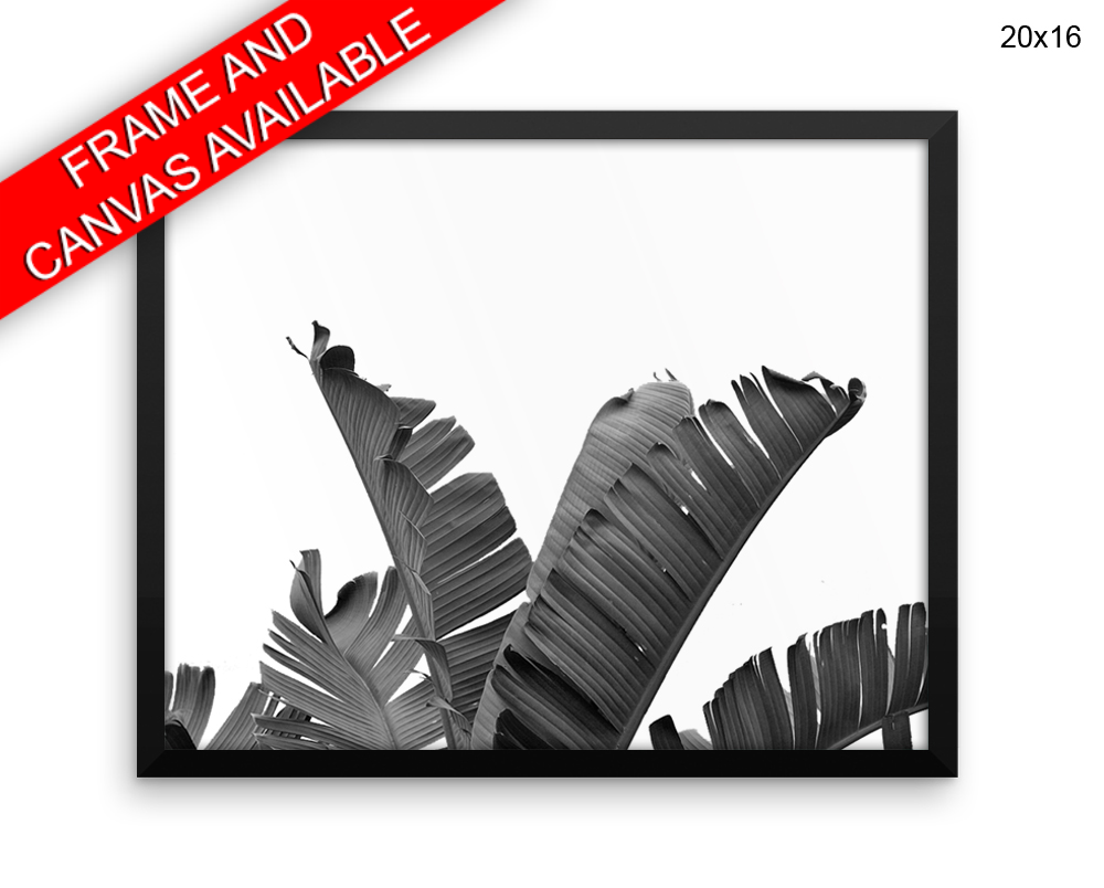 Banana Leaf Print, Beautiful Wall Art with Frame and Canvas options available Fruit Decor
