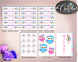 Decorations Baby Shower Decorations Owl Baby Shower Decorations Baby Shower Owl Decorations Pink Blue party ideas baby shower idea owt01