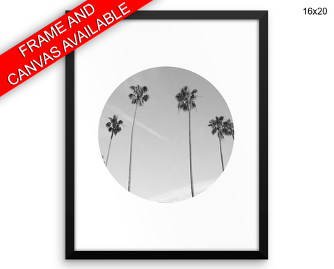 Palm Photography Print, Beautiful Wall Art with Frame and Canvas options available  Decor
