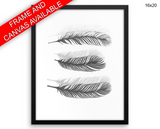 Black And White Print, Beautiful Wall Art with Frame and Canvas options available Feathers Decor
