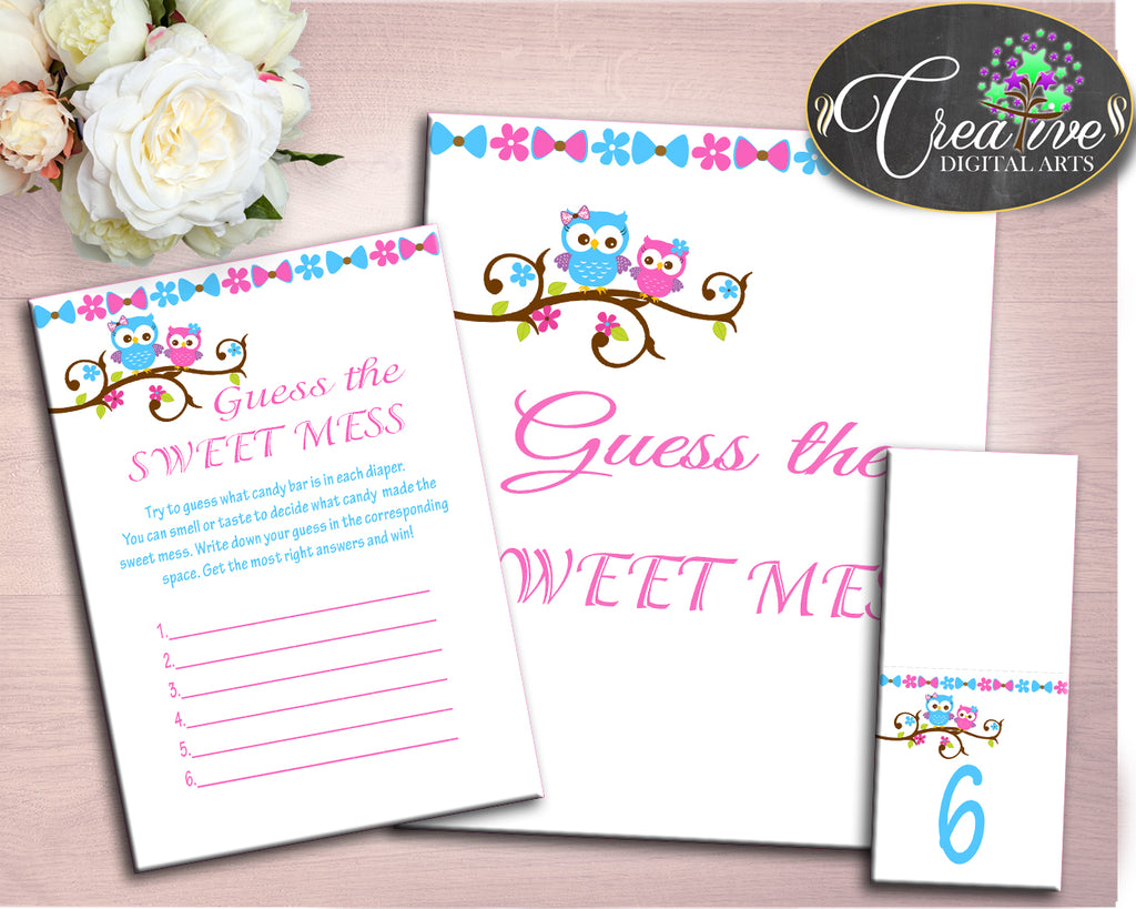 Sweet Mess Baby Shower Sweet Mess Owl Baby Shower Sweet Mess Baby Shower Owl Sweet Mess Pink Blue printable files instant download owt01