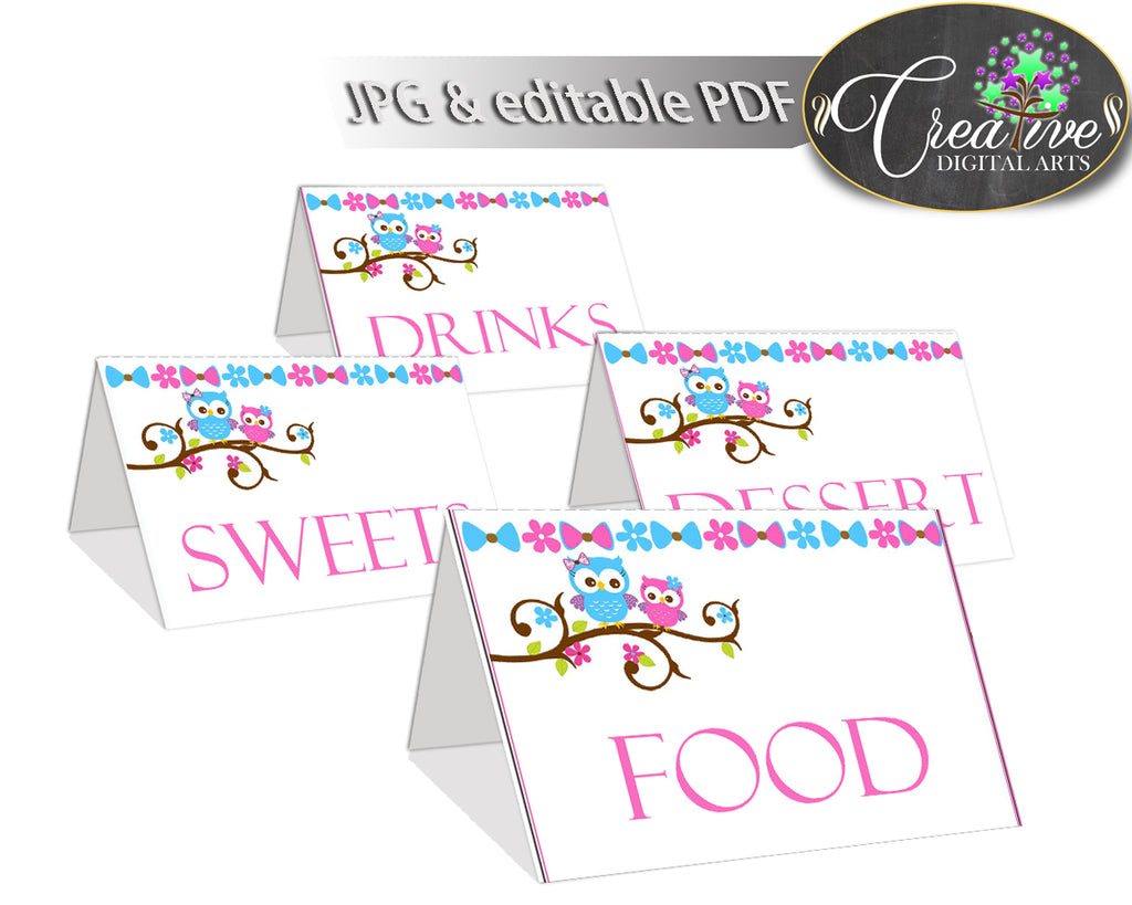 Food Tents Baby Shower Food Tents Owl Baby Shower Food Tents Baby Shower Owl Food Tents Pink Blue party stuff party decor prints party owt01
