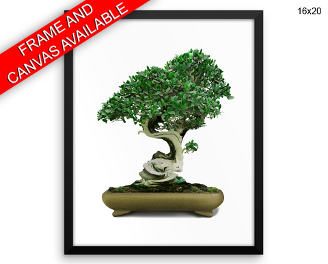 Bonsai Print, Beautiful Wall Art with Frame and Canvas options available Home Decor
