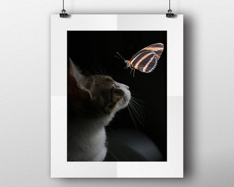 Wall Art Butterfly Digital Print Cat Poster Art Butterfly Wall Art Print Cat Living Room Art Cat Living Room Print Butterfly Wall Decor - Digital Download