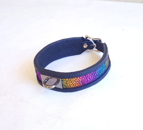 Rainbow BDSM Collar with Locking Buckle