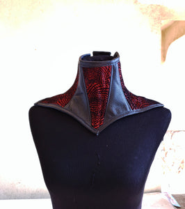 Red and Black Leather Posture Collar