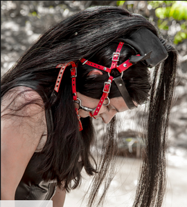 Pony Play Mane and Headstall- Real Horsehair
