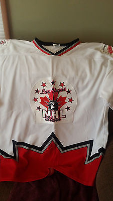 DETROIT RED WINGS DIABETIC CHARITY NELSON EMERSON HOCKEY JERSEY ADULT SIZE XL