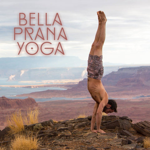 2019 - 10/26 - 2-4PM - Budokon Yoga: Handstands and Arm Balances @ Bella Prana, Tampa FL