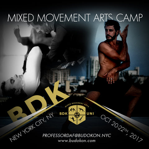 2017 - 10/20 - 10/22 - 3 day Mixed Movement Arts Camp (Martial, Yoga & Living Arts) in NYC - with Profs. Donato Helbling & Daf Snowdon