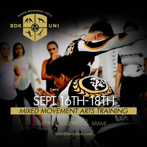 2016 - 09/16 - 09/18 - BDK Mixed Movement Arts Intensive (Martial, Yoga & Living Arts) in Miami Beach - with Kancho Cameron Shayne & Prof. Donato Helbling