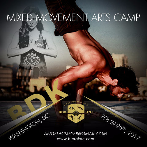 2017 - 02/24/17 - 02/26/17 - 3 day Mixed Movement Arts Camp (Martial, Yoga & Living Arts) in Washington DC - with Prof. Donato Helbling