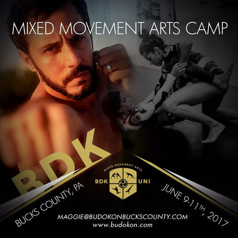 2017 - 06/9 - 06/11 - Accommodations for 3 day Mixed Movement Arts Camp (Martial, Yoga & Living Arts) in Bucks Cty, PA - with Prof. Donato Helbling