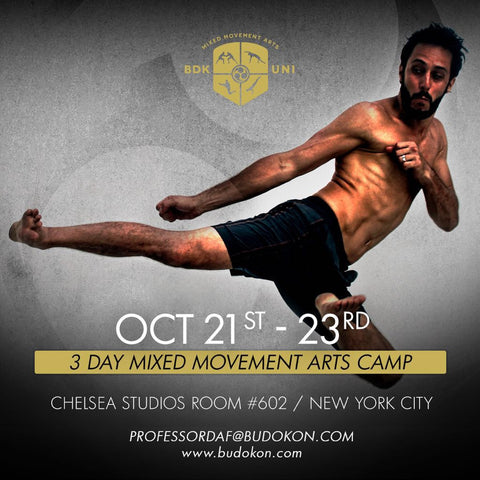 2016 - 10/21 - 10/23 - 3 day Mixed Movement Arts Camp (Martial, Yoga & Living Arts) in NYC - with Profs. Donato Helbling and Dafydd Snowdon Jones