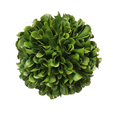 BOXWOOD PRESERVED BALL