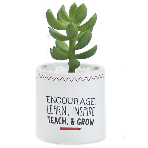 ARTIFICIAL ENCOURAGE SUCCULENT