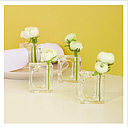 4 Napkin/Flower Holder