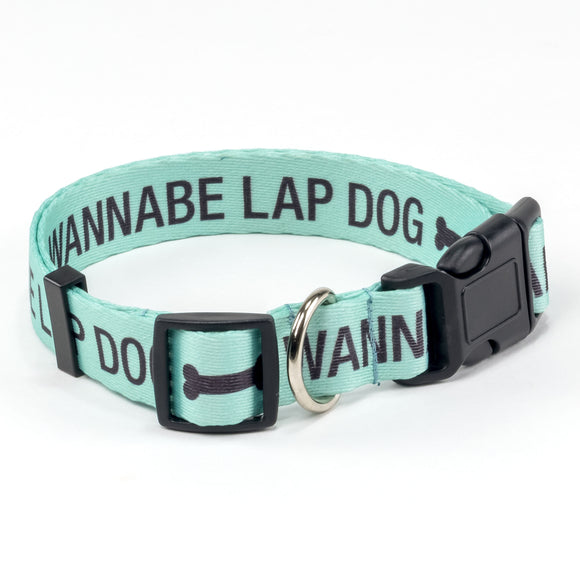 About Face Designs Wannabe Lap Dog Collar Lg/XL