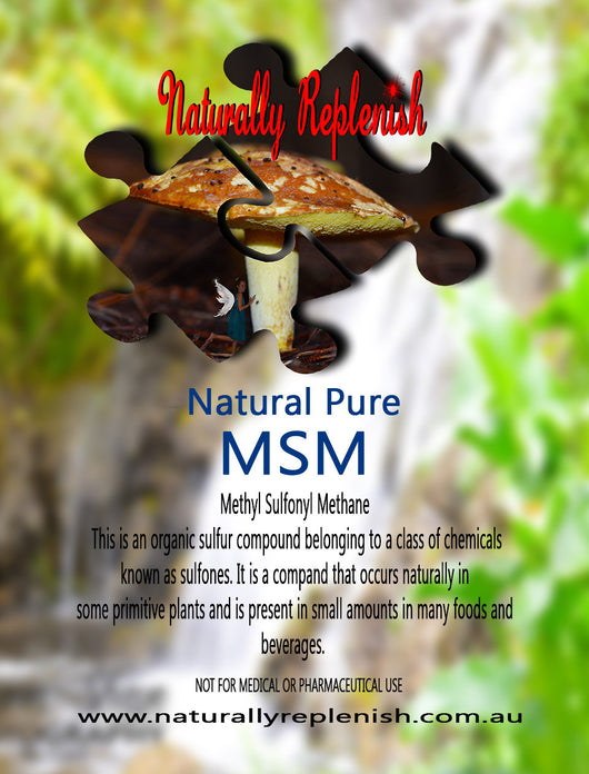 Naturally Replenish Natural Pure MSM 500g