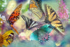 Butterfly Dance Canvas