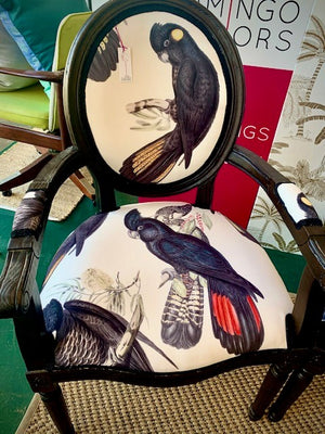 Black Cockatoo balloon back chair - ONE left