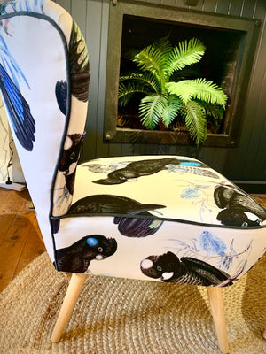 Black Cockatoo with Blue tail accent chair