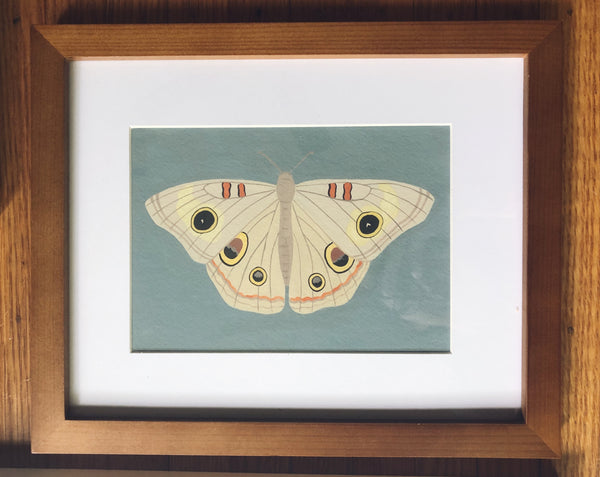 Common Buckeye-Framed Original Painting