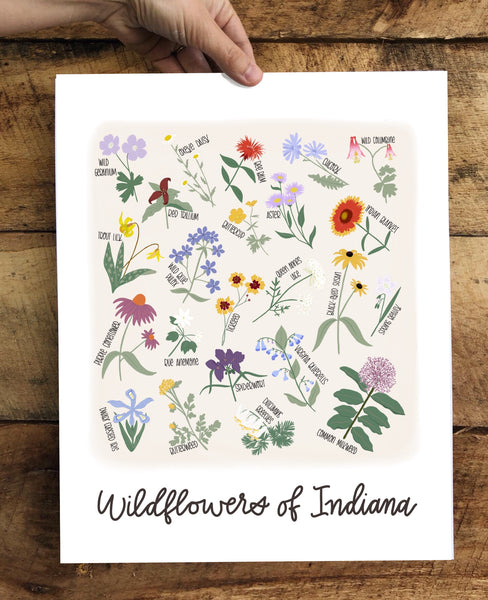 PRINT- Wildflowers of Indiana- color