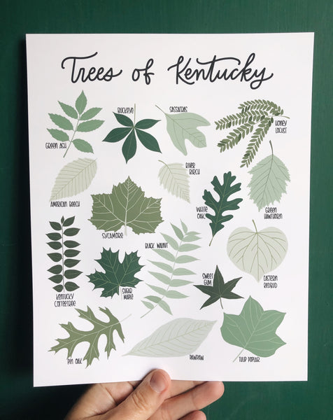 PRINT- Trees of Kentucky