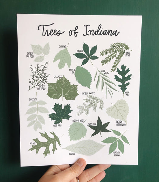 PRINT- Trees of Indiana