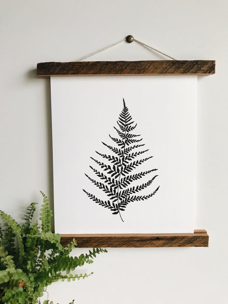 Print- Fern Illustration 8x10
