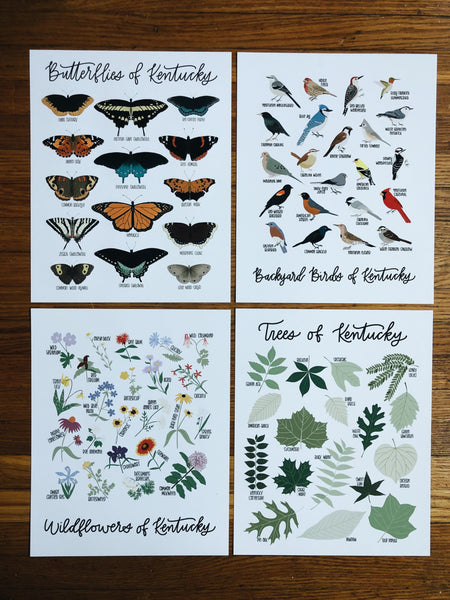 11x14 Natural History Print Bundle