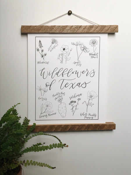 Print- Texas Wildflowers- 8x10