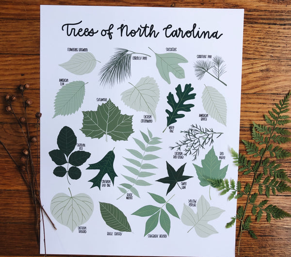 PRINT- Trees of North Carolina
