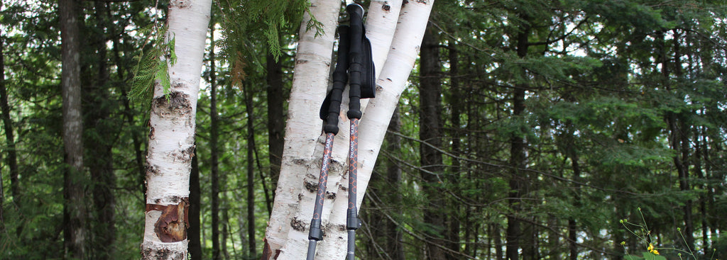 How do I set the correct height for my trekking poles?